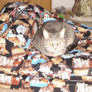 cat corner pet bed
