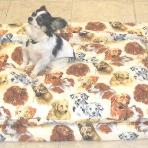 dog pet bed